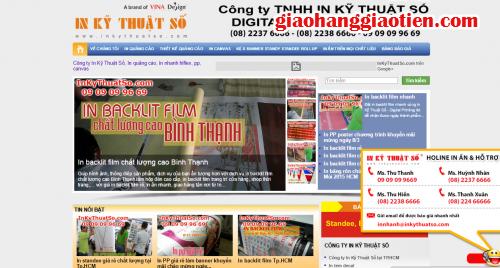 Để xây dựng website bán hàng trực tuyến hiệu quả, 3, Bichvan, GiaoHangGiaoTien.com, 11/03/2015 17:57:01